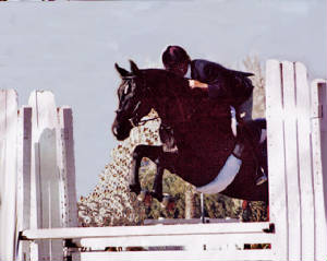 Mares/Lexi-jumping-cropped.jpg